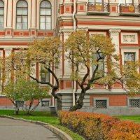 В севере Николаевского дворца :: Олег Попков