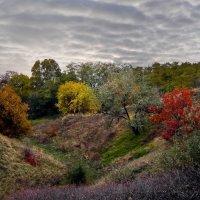 Осенняя палитра :: Serge Golos