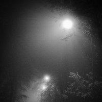 темные аллеи :: Olesia Kasabova