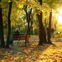 в парке осень :: Сергей Филин