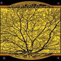 дерево :: Shmual Hava Retro