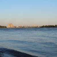 берег Дуная :: ольга швец