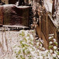 старый дворик в октябре... :: Марья Че