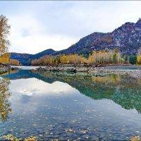 Нижняя Катунь. Осень :: Виктор Четошников