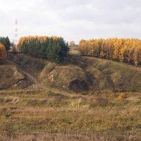 осень 2 :: Арсений Куликов