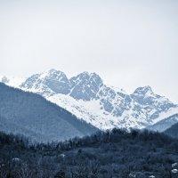 Кавказ :: Julia Porsche