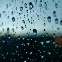 После дождя :: Михаил Нифантов
