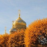 Купола в России кроют чистым золотом, чтобы чаще Господь замечал... :: Владимир Павлов
