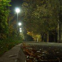 Ночной осенний парк :: Павел Карманов