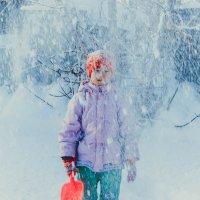 Снежок :: Света Кондрашова