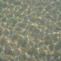 Море :: Елена Кочетова