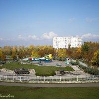 Парк Мира :: Svetlana Shumilova