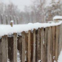 Зима... :: Игорь K