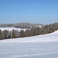 Зимний пейзаж :: Irina