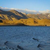 Озеро Толбо-Нуур. Монголия :: Наталья Карышева