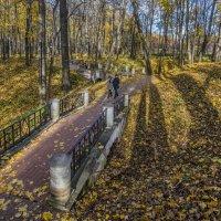Золотая осень в парке Царицыно :: Виктор Тараканов