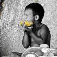 Кукуруза :: Serge Golos
