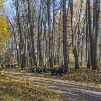 Золотая осень в Царицино :: Виктор Тараканов