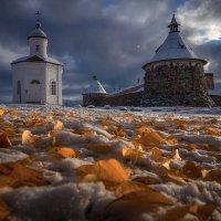 Зимняя осень :: Александр Бобрецов