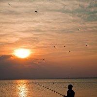 Рыбак :: Владимир Рябцев