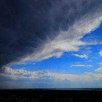 в предверии бури :: евгений Смоленцев