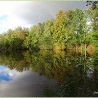 Зеркальное отражение осени. :: Антонина Гугаева