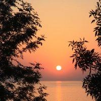 Закат на море :: Дмитрий Сушкин