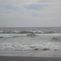 Ласкающая волна :: Карина Балаева