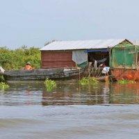 Жизнь на озере Танлесап :: Наталья Нарсеева