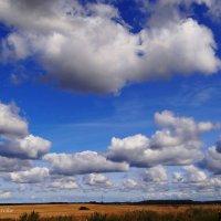 И плывут, и плывут облака.... :: Антонина Гугаева