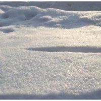 Snow :: Денис Снитко