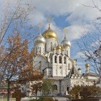 Алексеевский Зачатьевский монастырь :: Николай