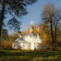 Церковь Михаила-архангела в Архангельском :: Николай