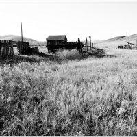 Умершая деревня :: Andrey Tsarev