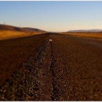 Дорога в вечность :: Andrey Tsarev