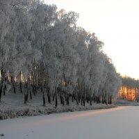 Зима :: Victor Klyuchev
