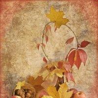 Красно-желтый натюрморт. :: Елена Kазак