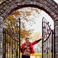 Ворота счастья.. :: Владимир Хижко