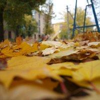 Осень. :: Алексей Харин