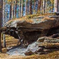 Каменный гриб... :: игорь козельцев