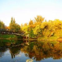 Золотая осень :: Анатолий Выхристенко