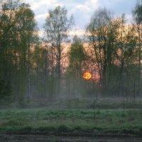 Природа замерла в ожидании следующего дня.......... :: Александр Володарский