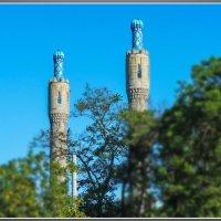 Мечеть. :: Александр Лейкум