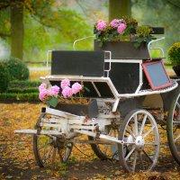 В осеннем парке... :: Игорь Маркс