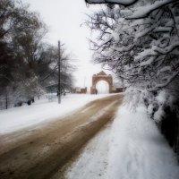 зима :: ольга швец