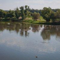 Вид с моста на Царицинский пруд :: Константин Фролов