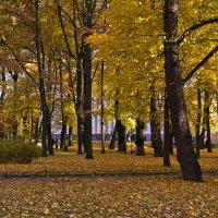 В городском саду... :: Валентин Яруллин