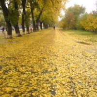 осень... :: Юрий Волошин