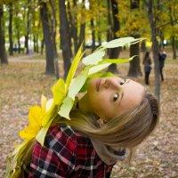 Осеннее солнце :: Софья Петрова