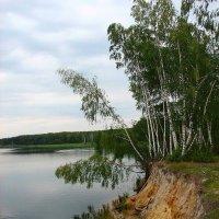 Лесное озеро :: Victor Klyuchev